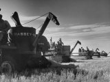Combines Being Used to Harvest Wheat Premium Photographic Print by Ed Clark