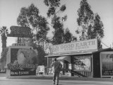 San Fernando Valley Real Estate Offices Using Strange Names Photographic Print by Peter Stackpole