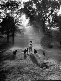 Dog Trainer Paul Bakewell Iii Taking Dogs for a Run Premium Photographic Print