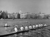 Crew Rowing on Charles River across from Harvard University Campus Photographic Print by Alfred Eisenstaedt