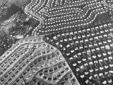 Aerial View of Suburban Housing Development Outside of Philadelphia Photographic Print by Margaret Bourke-White