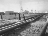 Local Citizens Walking over Pipelines from the Oil Fields Premium Photographic Print by Dmitri Kessel
