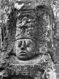An Ancient Mayan Stone Figure Premium Photographic Print by Dmitri Kessel