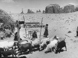 Native American Indian Children Watching over their Sheep in the Desert Reproduction photographique sur papier de qualit&#233; par Loomis Dean