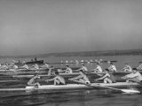 Washington Univ. Rowing Team Practicing on Lake Washington Lámina fotográfica de primera calidad por J. R. Eyerman