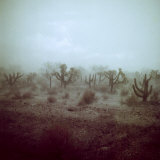 Summer Hail and Thunderstorm Falling on Desert Photographic Print by Loomis Dean
