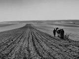 Farmer Lossening Top Soil of His Field Premium Photographic Print by Dmitri Kessel