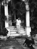 Ernest Hemingway Premium fotoprint van Alfred Eisenstaedt