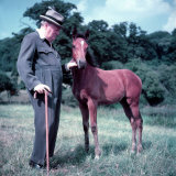 Winston Churchill and Horse Photographic Print