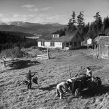 Japanese-American Family Working on their Farm after Returning from Internment Camps Photographic Print