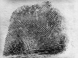 Closeup of Fingerprint of a Teenage Girl Who Is a Twin Photographic Print