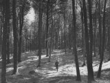 Gunder Hagg Training in the Woods Near Malmo Photographic Print