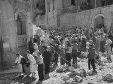 International Red Cross Employees Helping Jewish Refugees Premium Photographic Print
