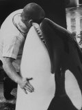 Shamu with Trainer Rusty White's Head in His Mouth Premium Photographic Print by Ralph Crane