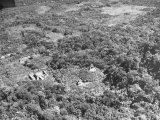 An Aerial View of the Ancient Mayan City of Palenque Premium Photographic Print by Dmitri Kessel