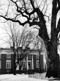 Building on Campus of St. John's College, Annapolis, Maryland Photographic Print by Alfred Eisenstaedt