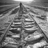 Man Walking Along Tracks That Have Been Cracked by a Special Nazi Machine Photographic Print