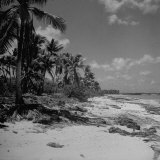 Shoreline at Bikini Atoll on Day of Atomic Bomb Test Photographic Print by Bob Landry