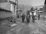 British Engineers Mine Sweeping Area at End of Greek Civil War Premium Photographic Print by Dmitri Kessel