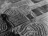 Aerial Photographs of Housing Developments Premium Photographic Print by Margaret Bourke-White