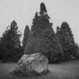 Grave of Charles Parnell, Irish Freedom Fighter Fotografie-Druck von Gjon Mili