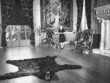 Singer Gertrude Niesen Standing Inside Her Home Premium Photographic Print by Bernard Hoffman