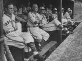 St. Louis Browns Players Sitting in the Dug Out During a Game Premium Photographic Print by Peter Stackpole