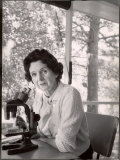 Biologist Author Rachel Carson Working with Microscope at Her Home Premium Photographic Print by Alfred Eisenstaedt