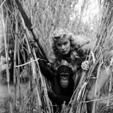 "Actress Irish Mccalla as ""Sheena Queen of the Jungle"" and Her Chimpanzee Costar Premium Photographic Print by Loomis Dean"