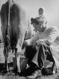 Author Erskine Caldwell Milking a Russian Peasant Woman's Cow During Visit to the Front Premium Photographic Print by Margaret Bourke-White