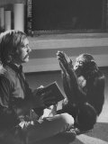 Dr. Roger Fouts Attempting to Teach Lucy the Chimpanzee American Sign Language Premium Photographic Print by Nina Leen