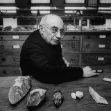 Leading Authority on Paleolithic Art Abbe Henri Breuil Premium Photographic Print by Dmitri Kessel