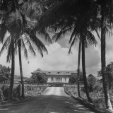 Exterior of Mansion on the Island of Martinique Premium Photographic Print by David Scherman