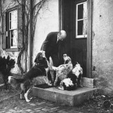 William C. Bullitt at Home with Pets Premium Photographic Print by Thomas D. Mcavoy