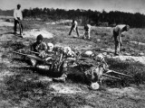 Black Laborers Dig Graves Near Cart Full of Skeletal Remains, Civil War Battlefield Premium Photographic Print by John Reekie