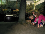 "Children Riveting to Tactile ""Woodlands"" Attraction, at Museum of Natural History Premium Photographic Print by Ted Thai"
