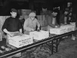 Men Working in the Packaging Department of the Cinzano Wine Works Premium Photographic Print by Carl Mydans