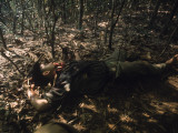 Dead Viet Cong Lying in Woods Premium Photographic Print by John Olson