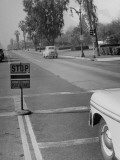 Cars Stopping to Let Pedestrians Pass Premium Photographic Print by J. R. Eyerman
