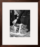 Dog Gets Snow Brushed from His Coat by Hotel Doorman Framed Photographic Print by Alfred Eisenstaedt