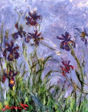 Irises Prints by Claude Monet