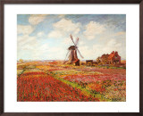 Tulip Fields with the Rijnsburg Windmill Art by Claude Monet