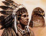 Young Hawk Prints by Gary Ampel