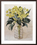 Hellebore in Wire Bottle Print