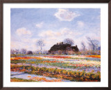 Tulip Fields at Sasenheim Print by Claude Monet
