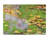 Water Lily Pond at Giverny Prints by Claude Monet