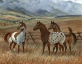 Appaloosa II Poster by Ron Jenkins