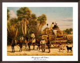 Bringing in the Cotton Poster by William Aiken Walker