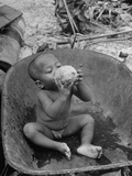 2 Year Old Drinking Coconut Premium Photographic Print