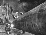 Workers From Gulf Interstate Gas Co. Welding Pipe to Be Used in Natural Gas Pipeline Premium Photographic Print